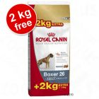 Large Bags Royal Canin Breed Adult - 12 kg + 2 kg Free! - Bulldog 24