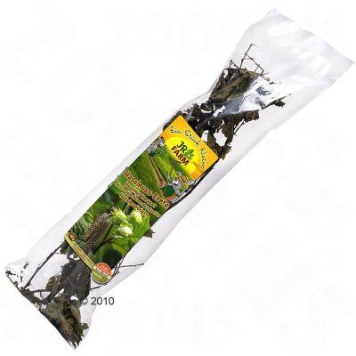 Branches de noisetier pour rongeur JR Farm- 120 g