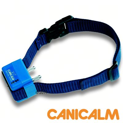 Collier anti-aboiement CANICALM- pile 3 V lithium - CR 123 A de rechange
