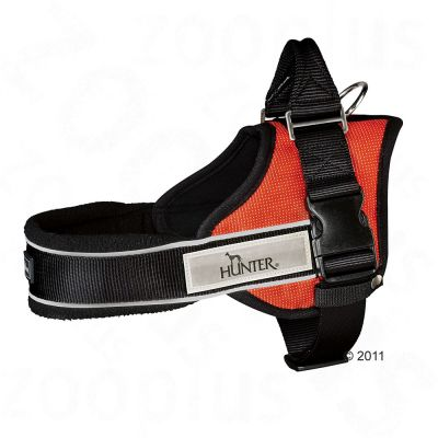 Hunter Ranger Professional Harness - orange - Size XS: 35 - 45 cm chest circumference