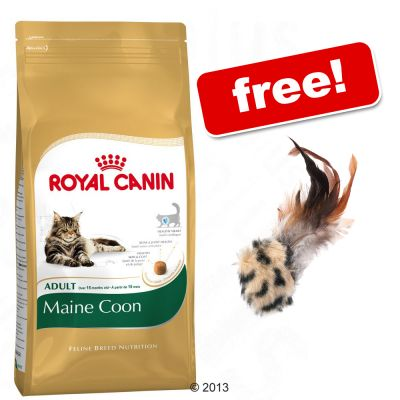 10kg Bags Royal Canin Breed + Feather Ball Toy Free!* - Ragdoll (10kg)