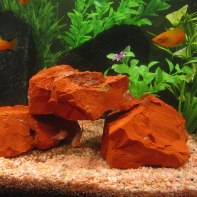 Red Jaspis Stone Aquarium Decoration - approx 2 kg: 2 - 4 stones approx. 0.4 - 1.2 kg each