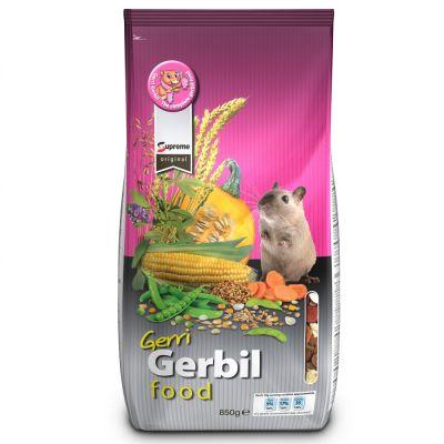 Gerri Gerbil pour gerbille - 850 g