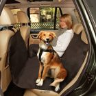Protective Car Mat Car Safe Easy - 162 x 132 cm (L x W)