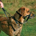 Trixie Top Trainer Education Harness - M: snout circumference 27 cm - Dog Leads & Collars