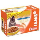 Iams Adult Selection Pouches 12 x 100 g - Mixed Selection in Gravy