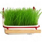 Bird Grass from Mucki - Bird grass with bracket