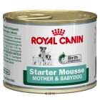Royal Canin Starter Mousse - 6 x 195 g - Dog Food Supplements & Special Diet Food