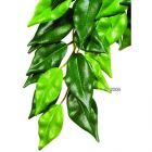 Hagen Exo Terra Ficus - dimensions: length 55 / diameter 25 cm - Reptile Plants and Plant Care