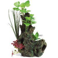 Wortel met plant van zeide - - Deco wortel