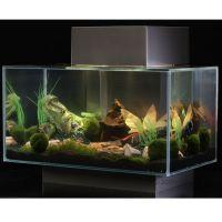 Fluval Edge Aquarium 25 liter - - oranje