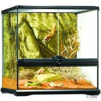 Hagen Exo Terra Glas Terrarium met Achterwand - - Maat: