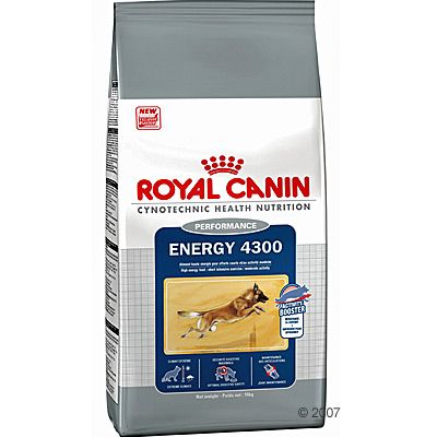 Royal Canin Performance Large Adult - Energy 4300 - Economy Pack: 2 x 15kg