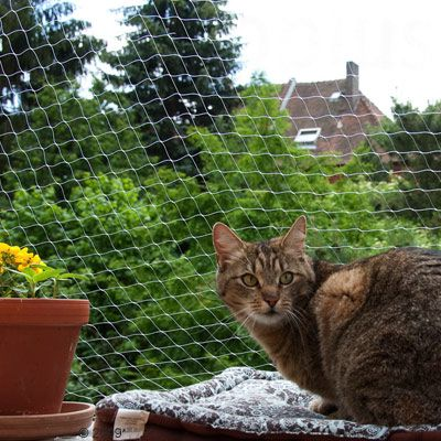 Trixie Protective Cat Net - Transparent - 4 x 3 m