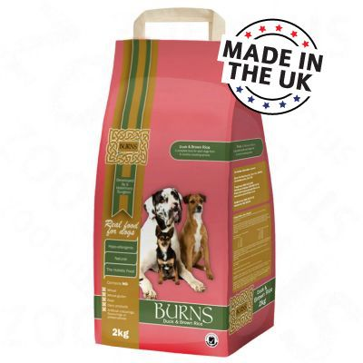 Burns Duck & Brown Rice Adult - 15 kg