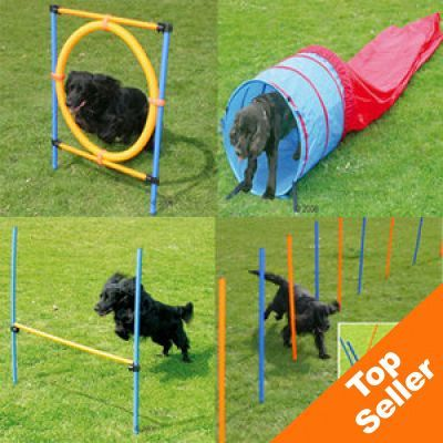 Complete Agility Fun & Sport Exercise Set - Saver Pack with 4 Elements