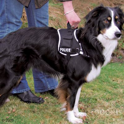 Trixie Dog Harness XDog black - 40 - 80 Chest circumference (Size  M-L)
