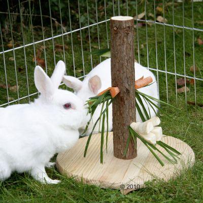 Mangeoire en bois naturel pour rongeur - 30 cm de diametre