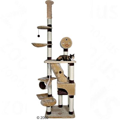 Trixie Cat Tree Belorado - beige / brown