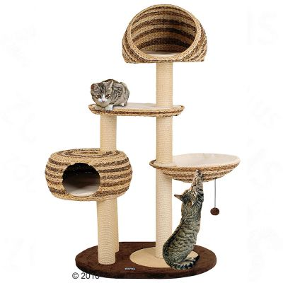Paradise Duo Banana-Leaf Cat Tree -  58 x 103 x 158 cm (L x W x H)