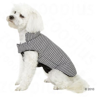 Dog Coat Pepita - 26 cm back length