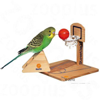Budgie Streetball Court - 20 x 20 x 20 cm (L x W x H)