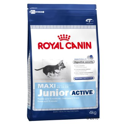 Royal Canin Maxi Junior Active - Economy Pack 2 x 15 kg