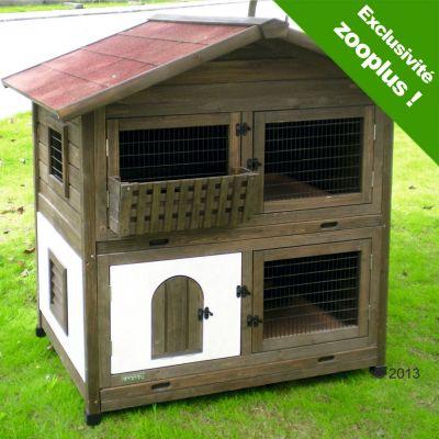 dictionnaire des maladies des rongeurs et lapins par le. Black Bedroom Furniture Sets. Home Design Ideas