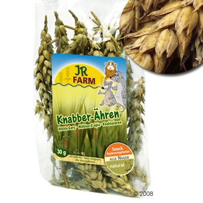 JR Farm Nibble Ears - wheat 100 g (approx. 50 pc.)