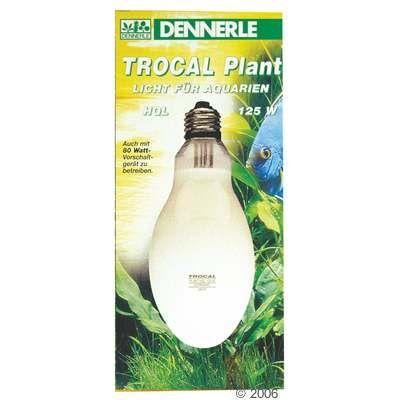 Ampoule HQL Dennerle Trocal Plant- 125 W