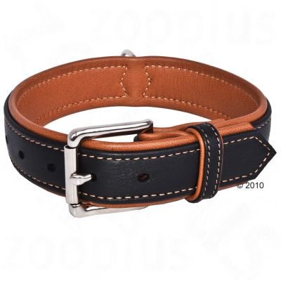 Hunter Canadian Dog Collar - Size 55