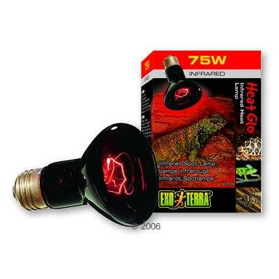 Hagen Exo Terra Infrared Heat Lamp Heat Glo - 100 W