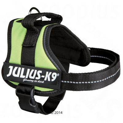 pettorina julius-k9 power pastel green