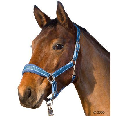 Licol Soft pour cheval- cheval, bleu marine