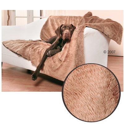 Pet Blanket Queeny Teddy - teddy bear cloth