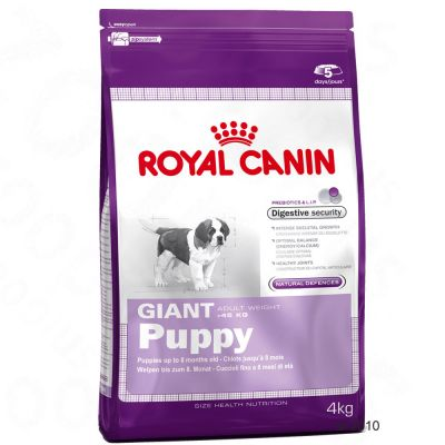 Royal Canin Giant Puppy Hundefutter – 15 kg