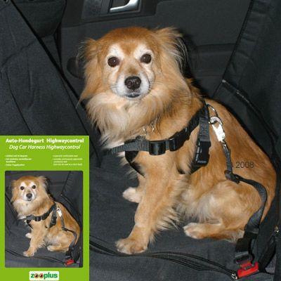Ceinture de sécurité pour chien Highwaycontrol- taille M : taille du poitrail 50 à 70 cm