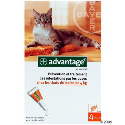 Antiparasitaire Advantage 40 pour chat pesant de 1 à 4 kg- 2 x 4 pipettes