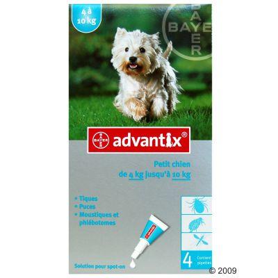 Advantix pour chien de petite taille - 4/10 kg- 4 pipettes
