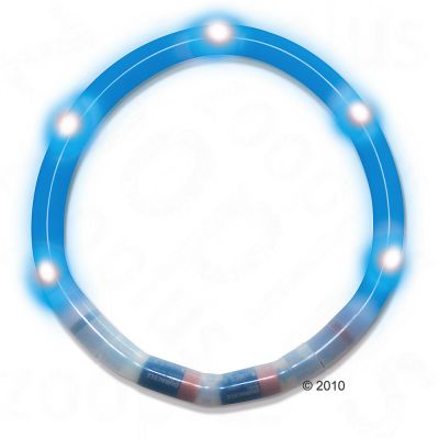 Collier lumineux pour chien, bleu- L 45 cm