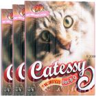 Catessy BBQ Sticks 3 x 5 Pieces - with fresh salmon