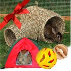Gift Set : Small Pet Play Time! Gift Set: Small Pet Playtime!