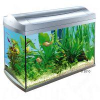 Tetra AquaArt Aquarium 60 l - - zilver