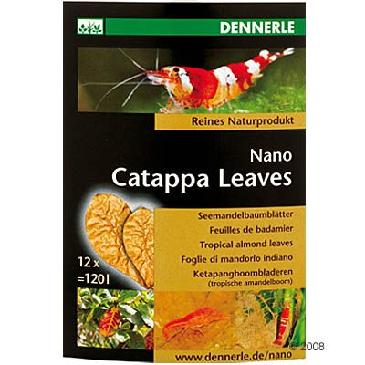 Dennerle Nano Catappa Leaves - 12 Leaves