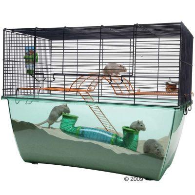 Cage Savic Habitat XL pour rongeur - L 70 x l 37 x H 56 cm