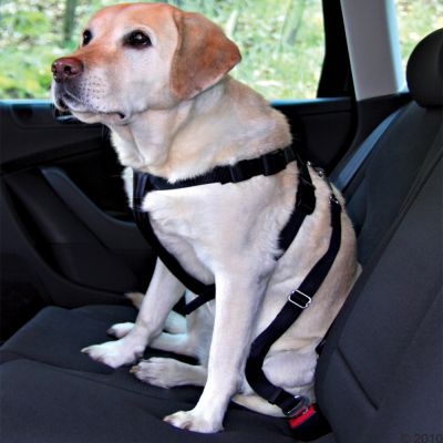 Trixie Dog Car Harness - Size S: chest circumference 30-60cm