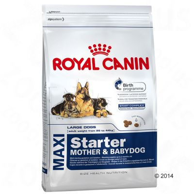 Royal Canin Maxi Starter - Mother & Babydog - Economy Pack: 2 x 15kg