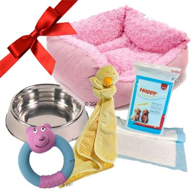 Puppy Gift Set: Baby Girl Pink - 5 piece set