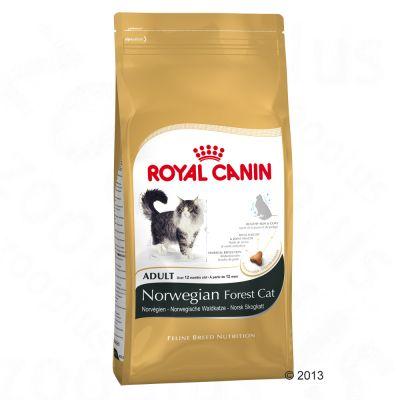 Royal Canin Norwegian Forest Cat - 2kg