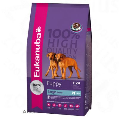 Eukanuba Puppy & Junior Large Breed - 15 kg
